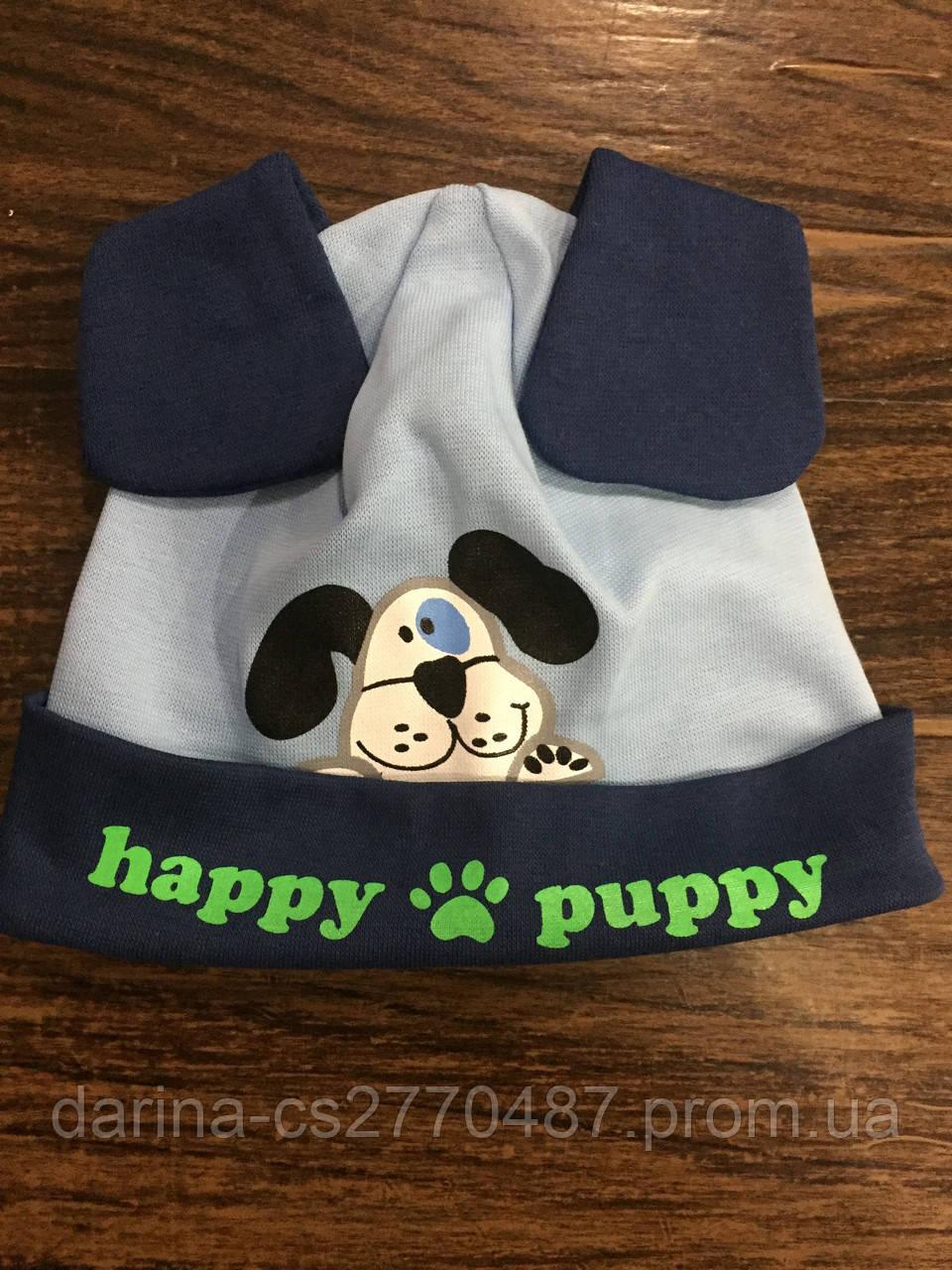 Детская шапка для мальчика с ушками