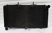Радиатор охлаждения двигателя Honda CB600 Hornet, фото 1