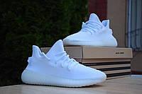 Женские кроссовки в стиле Adidas Yeezy Boost 350, текстиль технология Primeknit, белые 37 (23,5 см)