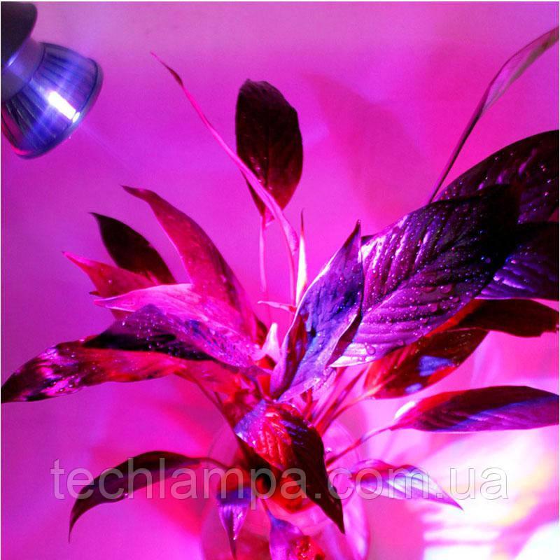 купить лампу днат для выращивания растений