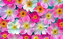 Искусственные цветы и наполнители