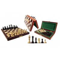 Шахматы коричневые магнитные 28x14x3,8см (король-60мм)