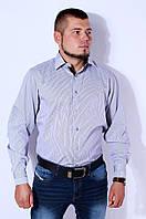Рубашка мужская белая в серую полоску на рост 176-182 Kongres V-950-1