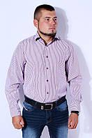 Рубашка мужская в бордовую полоску на рост 176-182 Kongres V-950-2