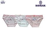 """Трусики детские для девочек """"Зайчик"""" ТМ Baykar, Турция оптом р.5 (146-152 см), фото 2"""