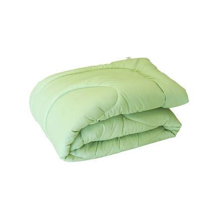Одеяло силиконовое Руно салатовое демисезонное 200х220 евро, фото 2