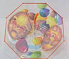 Детский прозрачный зонт трость Ёжик ТОП Качество, фото 3