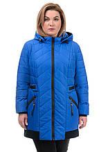 242 Женская куртка осень-весна Норма василек (52-58)