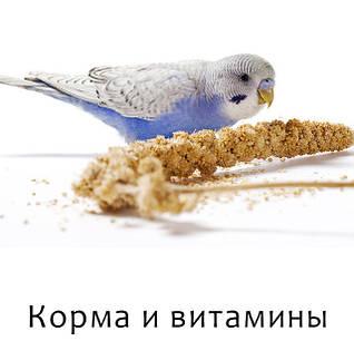 Корма и витамины