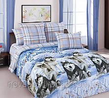 Комплект постельного белья Хаски Клетка (перкаль, 100% хлопок)