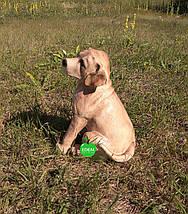 Садовая фигура собака щенок Лабрадора, фото 3
