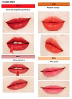 Тинт для губ Missha Wish Stone Tint Velvet (RD01) Limited Line Edition 2018, 4.6 мл (8809581477964), фото 2