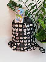 Сумка-мешок для спортивной формы и обуви с котиками 44*34 см