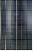 Сонячна панель Risen RSM60-6-280P, 280W