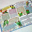 Домашні улюбленці. Енциклопедія для дітей, фото 4
