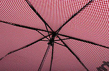 Женский зонт автомат H. DUE. O модель 251-1., фото 2