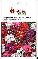 Семена цветов Вербена Кварц ХР F1 смесь (Бадваси), 10 шт