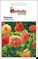 Семена цветов  Гайлардия Лоренция (Бадваси), 0,2г