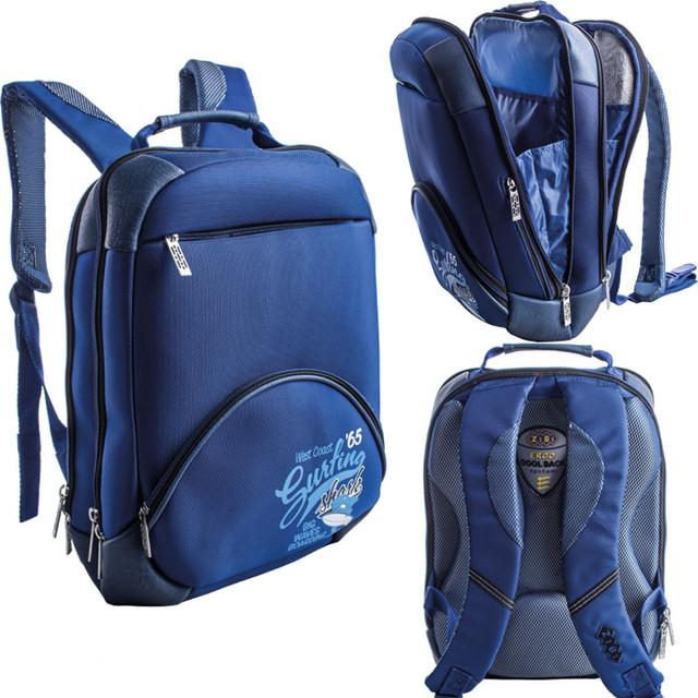 Рюкзаки школьные и ранцы ортопедические, пеналы, сумки для обуви Zibi