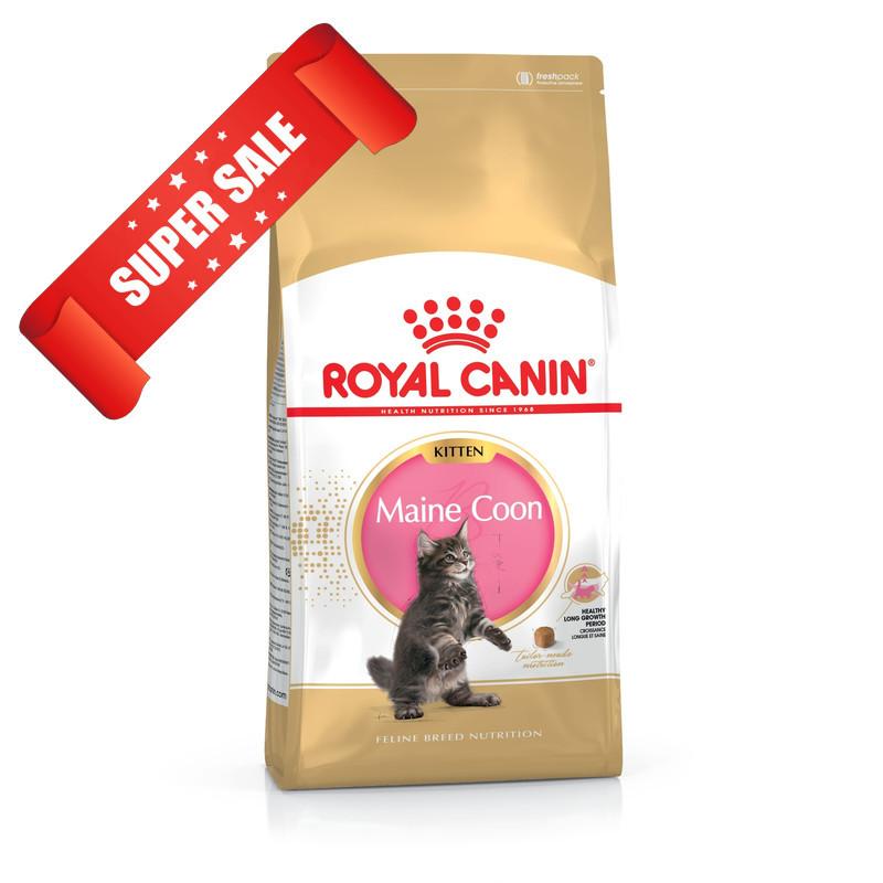 Сухой корм для котов Royal Canin Maine Coon Kitten 4 кг