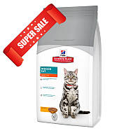 Сухой корм для котов Hill's Science Plan Feline Adult Indoor Cat Chicken 0,3 кг