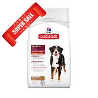 Сухой корм для собак Hill's Science Plan Canine Adult Advanced Fitness Large Breed Lamb & Rice 12 кг