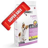 Сухой корм для собак 1st Choice Toy & Small Breeds Healthy Skin & Coat Puppy 2,72 кг