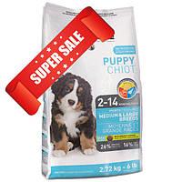 Сухой корм для собак 1st Choice Medium & Large Breeds Puppy 7 кг