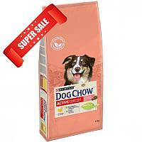 Сухой корм для собак Purina Dog Chow Active Adult Chicken 14 кг