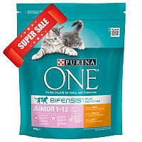 Сухой корм для котов Purina One Junior Chicken & Whole Grains 200 г