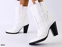 Ботинки казаки белый питон из натуральной кожи, фото 1