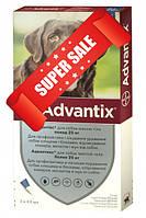 Капли на холку от блох и клещей Bayer Advantix для собак весом от 25 кг 4 х 4 мл