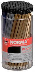 Карандаш чернографитный NORMA 401 НВ с ластиком металлик