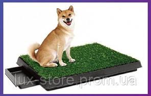 Croci Pet Лоо - туалет для собак и кошек  55х45х10cм (C6066996)