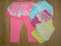 Трикотажные лосины+кружевная юбка на девочек оптом, Aquamarine, 98-128 р.
