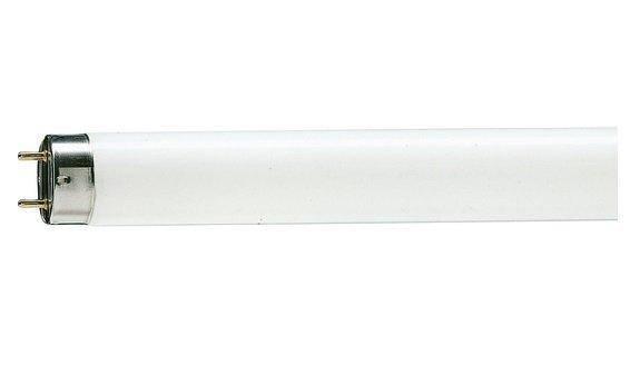 WATC T8 18W 6400K G13 Лампа люмінесцентна, фото 2