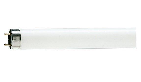 WATC T8 18W 6400K G13 Лампа люмінесцентна