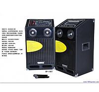 Активная акустическая система Temeisheng DP-195T код 195T