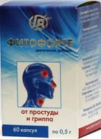 """Фитофорте От простуды и гриппа 60кап """"ГринВиза"""""""