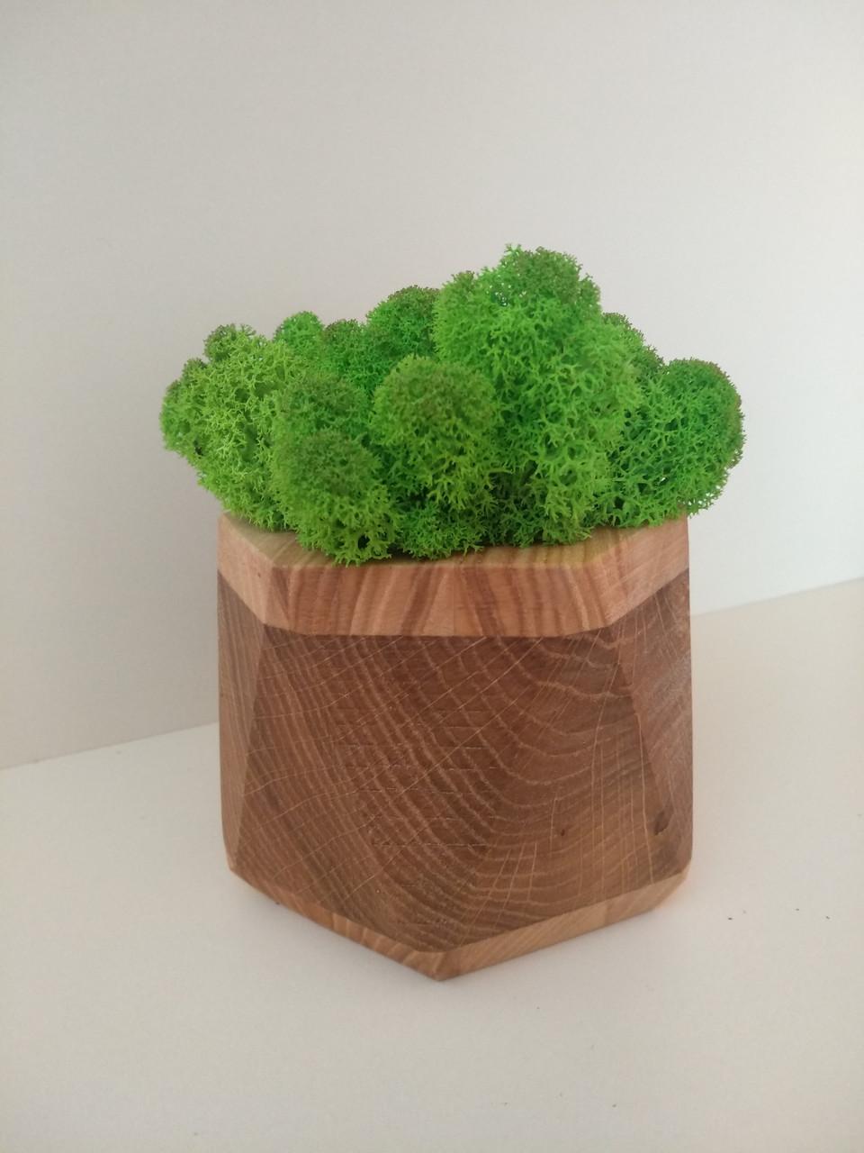 Кашпо з мохом (ягель)