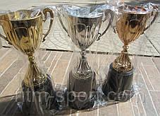 Кубок спортивный h - 22 см, фото 3