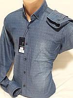 Рубашка мужская с длинным рукавом Pierrini  vd-0011 джинсовая голубая приталенная Турция
