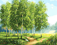 """Картина по номерам 50х40см Rainbow Art """"Зеленые березы"""""""