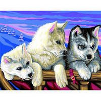 Набор для творчества Детская раскраска по номерам Хаски Sequin Art SA1036