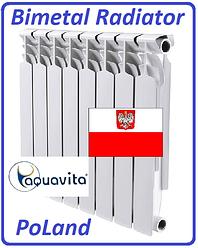 Биметаллический радиатор отопления AQUAVITA 350 х 80 Польша