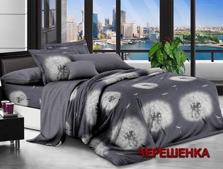Полуторный набор постельного белья 150*220 из Ранфорса №181408AB Черешенка™, фото 2