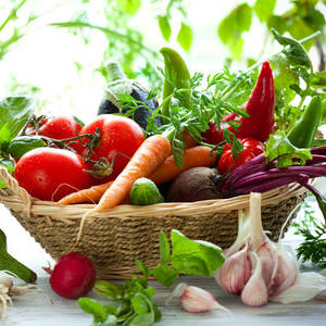 овочі, фрукти, ягоди, гриби, загальне