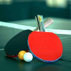 Настольный теннис, общее