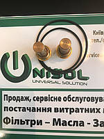 Термостат компрессора Atmos (Атмос) - 427900000105