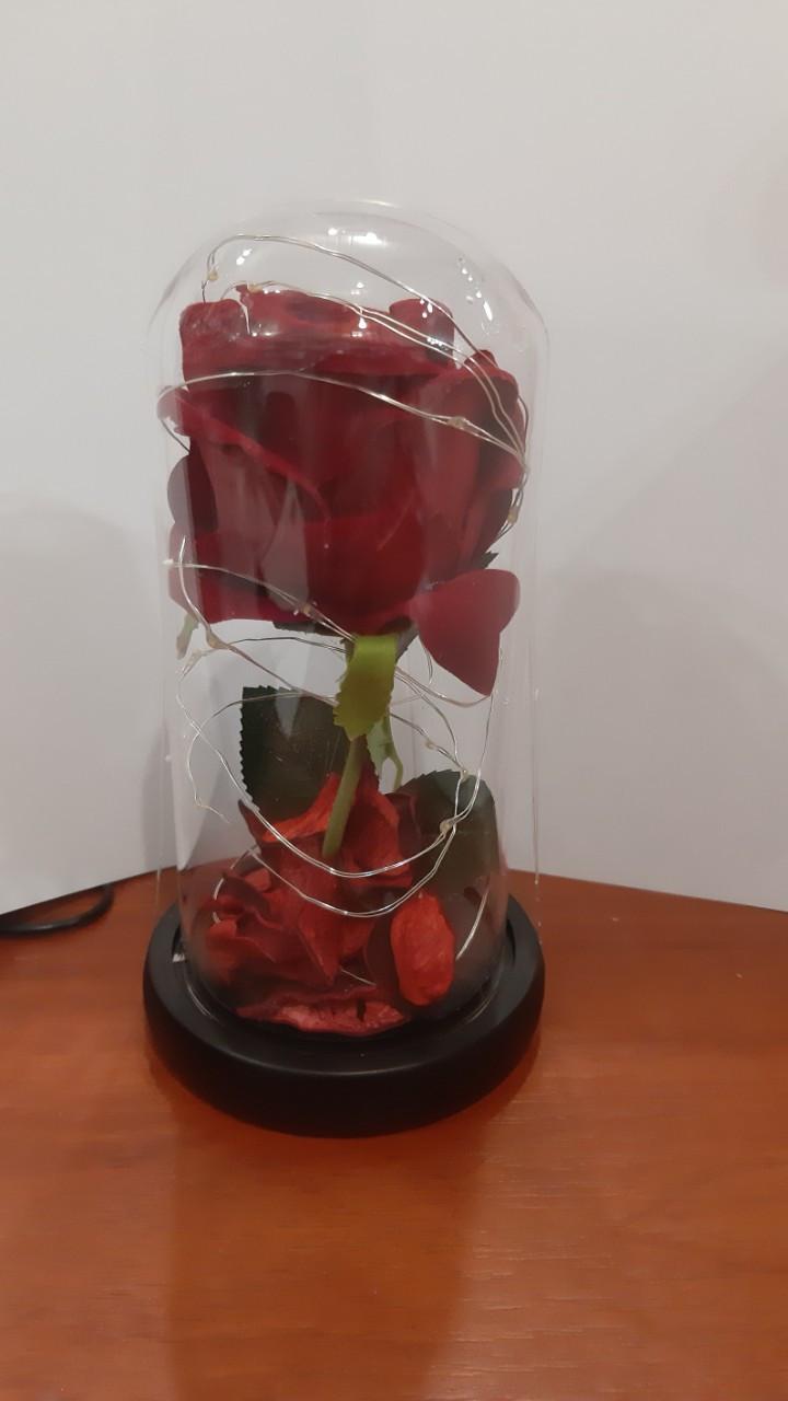 Роза в стеклянной колбе  с подсветкой 20 см